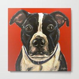 Pitbull Painting, Red Pit Painting, Dog Art Metal Print