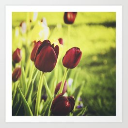 When Spring Was Here Art Print