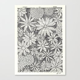 Bloomers Canvas Print