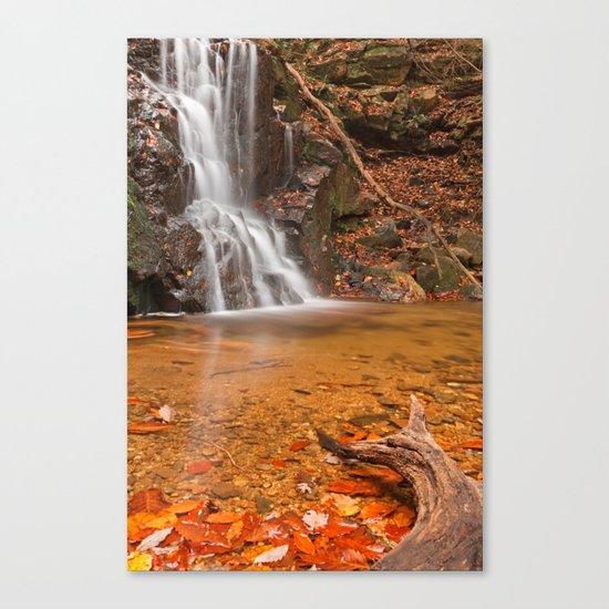 Avalon Hook Falls Canvas Print