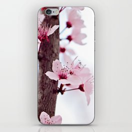 CHERRY BLOSSOMS I iPhone Skin