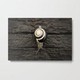 Sleeper Snail - Landscape Metal Print