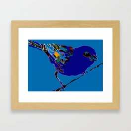 Madagascar Fody - Blue/Neon Blue Pop Art Framed Art Print