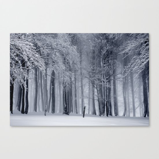 Peaceful Escape Canvas Print