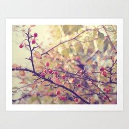 Berry Christmas Art Print