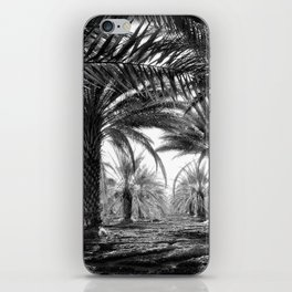 Vintage Palms Trees : Coachela Valley California 1937 iPhone Skin