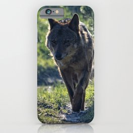 Wolf in the mist iPhone Case