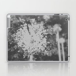 BW Spring Laptop & iPad Skin