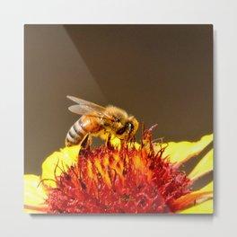 Pollenator at Work Metal Print