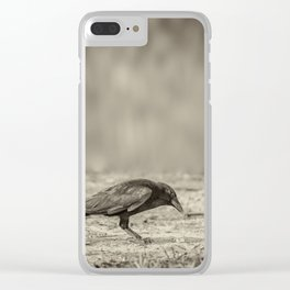 Curious Crow Clear iPhone Case