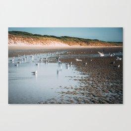 Low tide beach Canvas Print