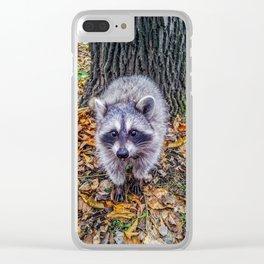 Walking on fallen leaves Clear iPhone Case