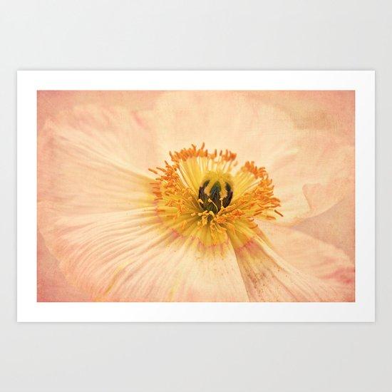 Poppy Dream Art Print