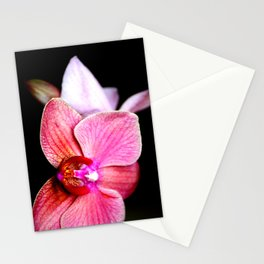 Orchid 3 Stationery Cards