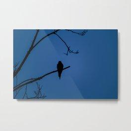 Bird Silhouette - Midnight Metal Print