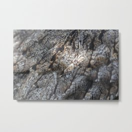 Tawny Frogmouth Metal Print