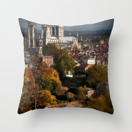 York Throw Pillow