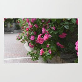 Roses #1 Rug
