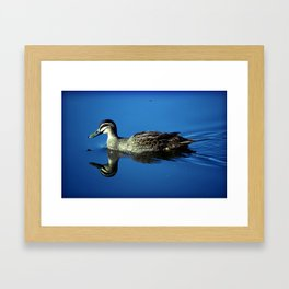 Duck! Framed Art Print