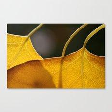 Autumn Veins  Canvas Print