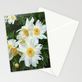 Peony Power Stationery Cards
