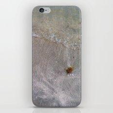 Sandy Waves iPhone & iPod Skin