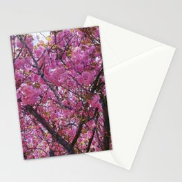 Dogwood Pink Purple Tones Stationery Cards
