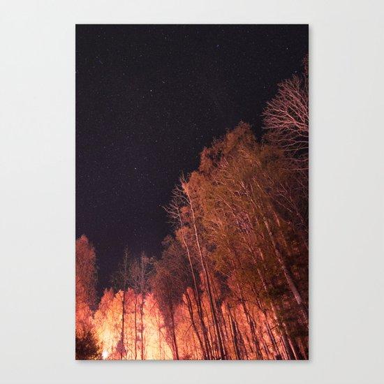 Firey woods Canvas Print