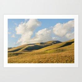 Of Hills And Hawks Art Print