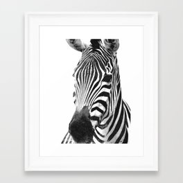 Black and white zebra illustration Framed Art Print