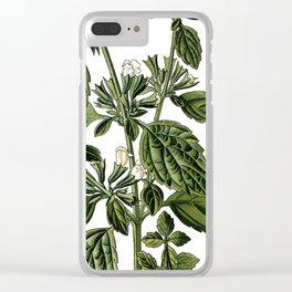 Nature, botanical print, flower poster art of Lemon Balm Clear iPhone Case