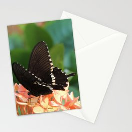 Kowloon Wings Stationery Cards