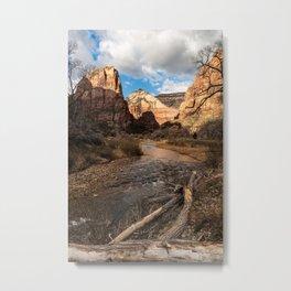 Virgin River, Zion National Park Metal Print