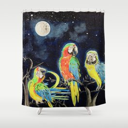Moonlight Rendezvous Shower Curtain