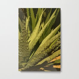Aloe Vera Leafes Abstract Metal Print
