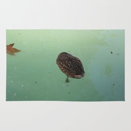 Peaceful Afternoon Siesta - duck napping on the water Rug