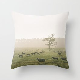 Sunrise burning through heavy fog over field of grazing sheep. Norfolk, UK. Throw Pillow