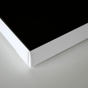 Taoist Mandala - White on Black Canvas Print