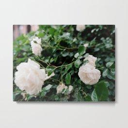 film + flowers + brooklyn Metal Print