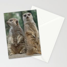 Meerkats: Best Friends Forever Stationery Cards