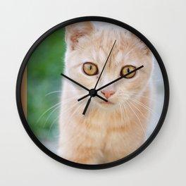 Esmeralda The Kitty Wall Clock