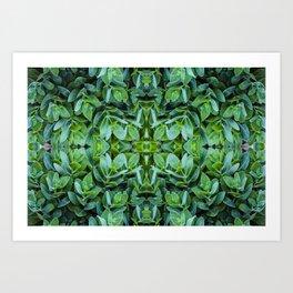 Grow, grow, grow | Leafy dreams Art Print