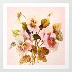 pink pansies Art Print