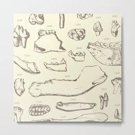Paleo Dentistry Metal Print