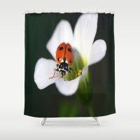 ladybug Shower Curtains featuring LadyBug by Wendyjc Photography