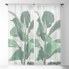 Rubber Fig Sheer Curtain