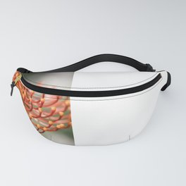 Exotic Pin Cushion Protea Flower- Botanical Photography #Society6 Fanny Pack