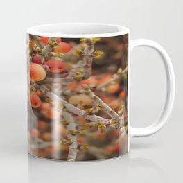 Joshua Tree Desert Mistletoe RMD Designs Coffee Mug
