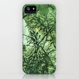 Jungle View at Iguazu National Park  iPhone Case