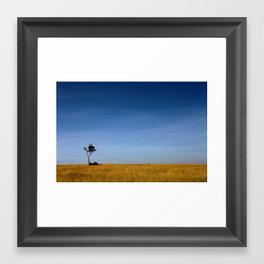 The Lonely Vulture Framed Art Print
